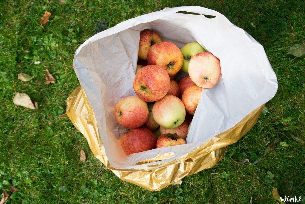 Plaattaart maken van appels