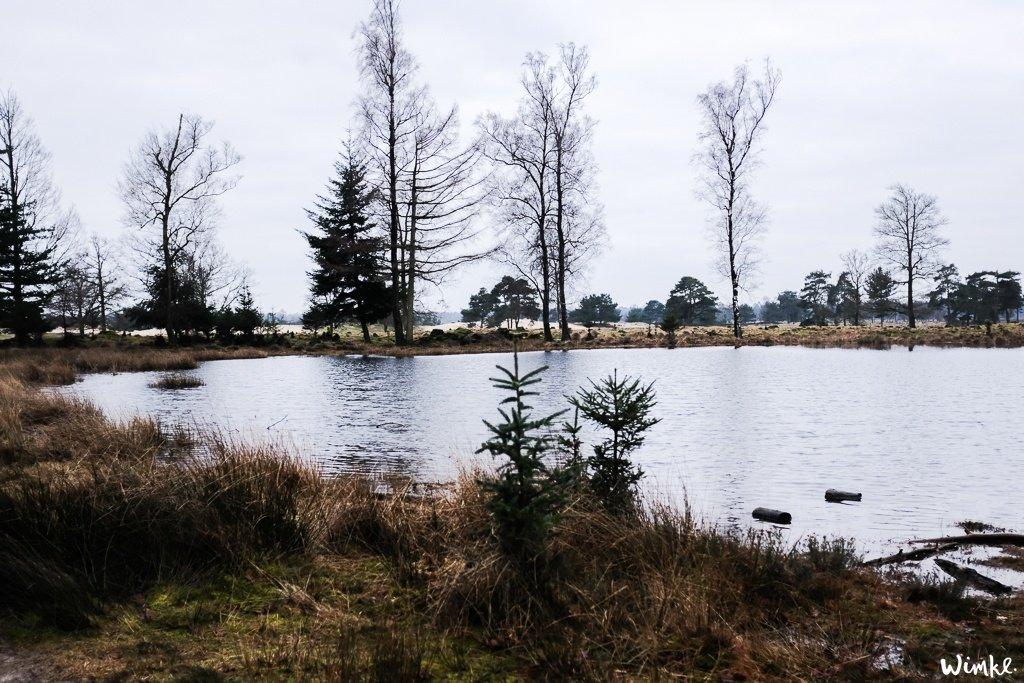 Een weekend in Boshuis Friesche Duin in Appelscha - www.wimke.nl